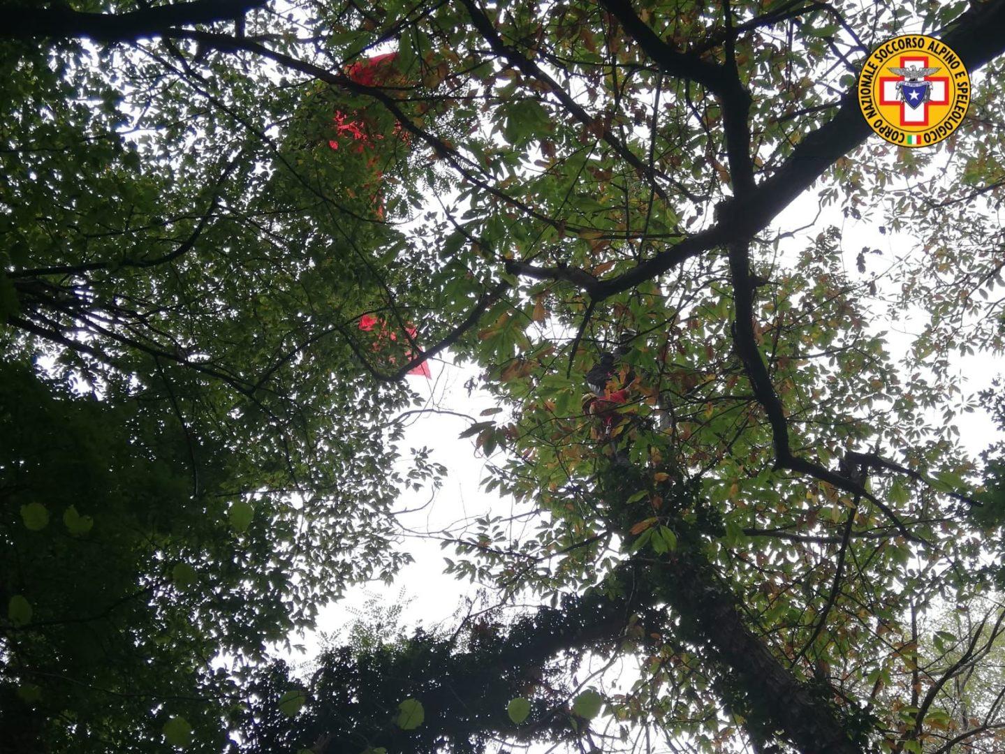 Parapendista cade e rimane sospesa su albero a 12 metri di altezza