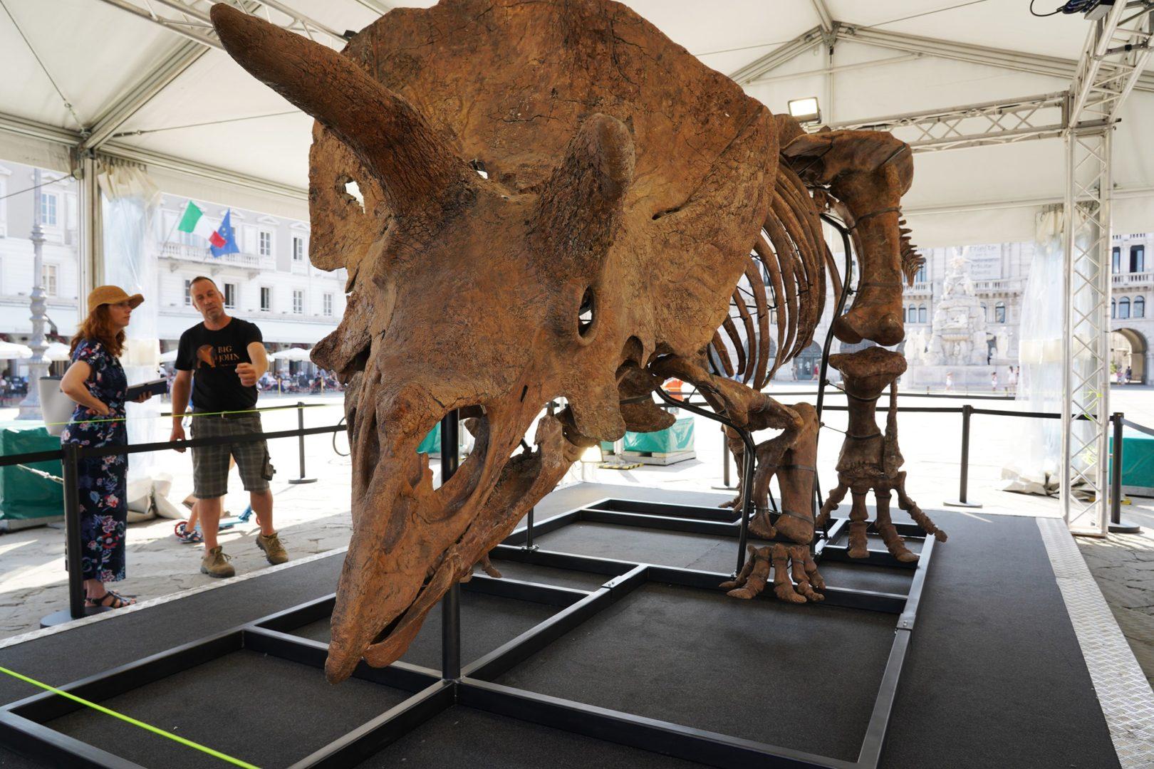 Trieste: Big John entra nel Guinness World Record